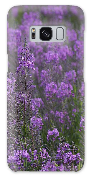 Field Of Fireweed Galaxy Case