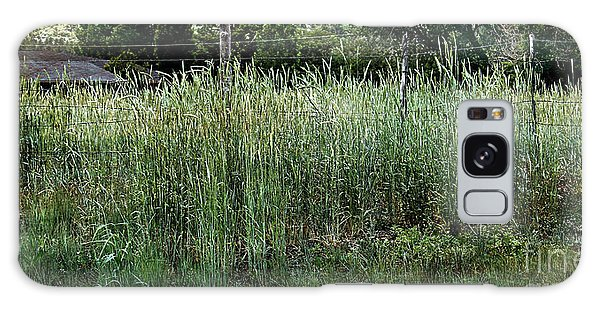 Field Of Grass Galaxy Case