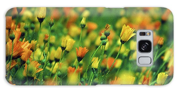 Field Of Orange And Yellow Daisies Galaxy Case