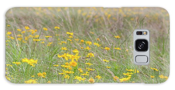 Field Of Yellow Flowers In A Sunny Spring Day Galaxy Case