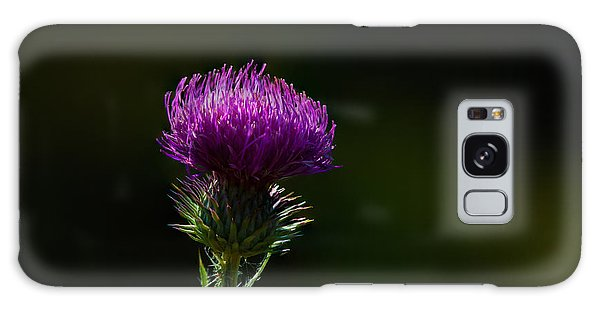 Field Thistle Galaxy Case