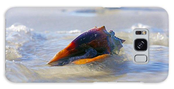 Fighting Conch On Beach Galaxy Case