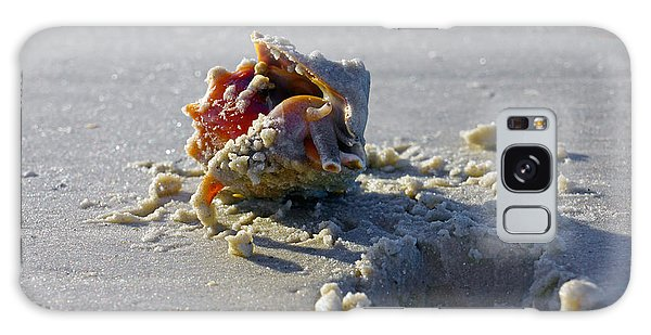 Fighting Conch On The Beach Galaxy Case