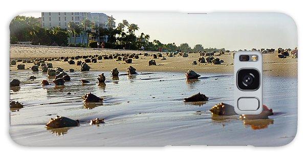 Fighting Conchs At Lowdermilk Park Beach In Naples, Fl  Galaxy Case