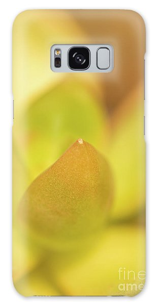 Galaxy Case featuring the photograph Find Focus In Nature by Ana V Ramirez