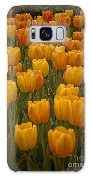Fine Lines In Yellow Tulips Galaxy Case