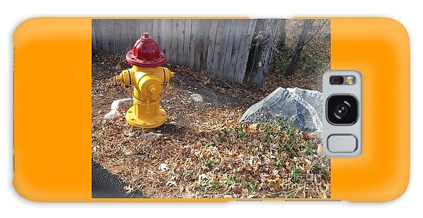 Fire Hydrant Checking Its Facerock Galaxy Case by Richard W Linford