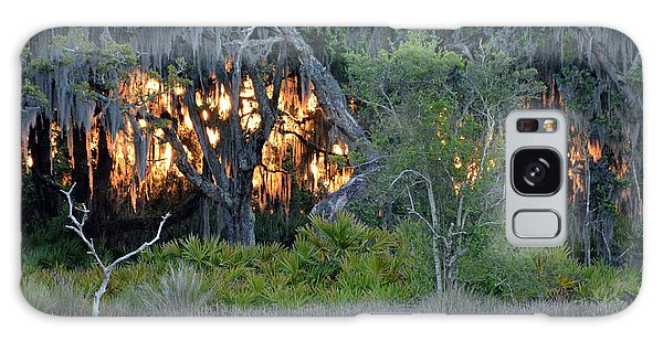 Fire Light Jekyll Island Galaxy Case