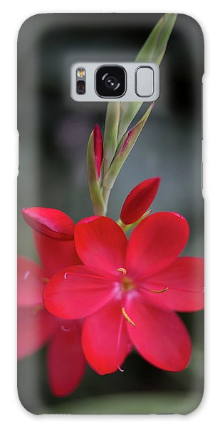 Fire Lily 2 Galaxy Case