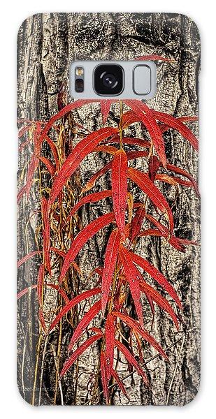 Fireweed 2015 Galaxy Case