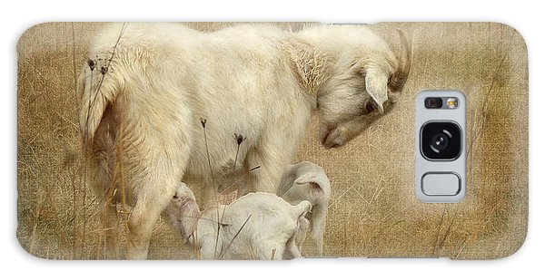 First Day Of Life Galaxy Case by Kathy Russell