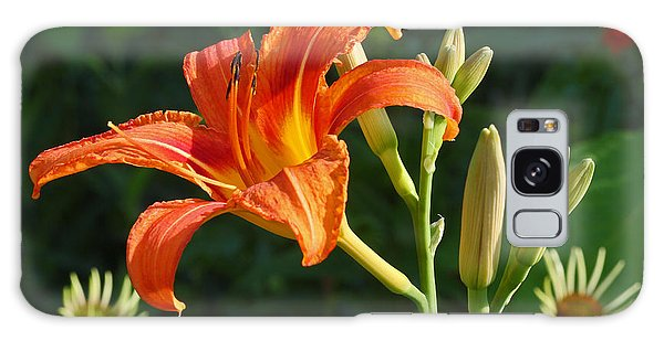 First Flower On This Lily Plant Galaxy Case by Steve Augustin