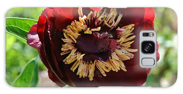 First Peony Bloom Galaxy Case by Marsha Heiken