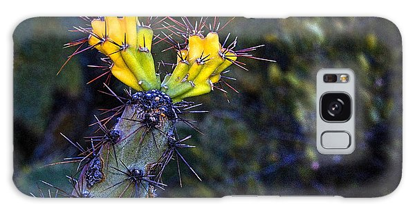 First Signs Of Spring On The Sonoran Desert Galaxy Case