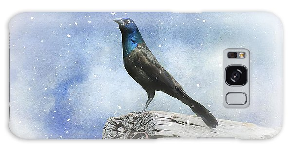First Snow And Common Grackle Galaxy Case