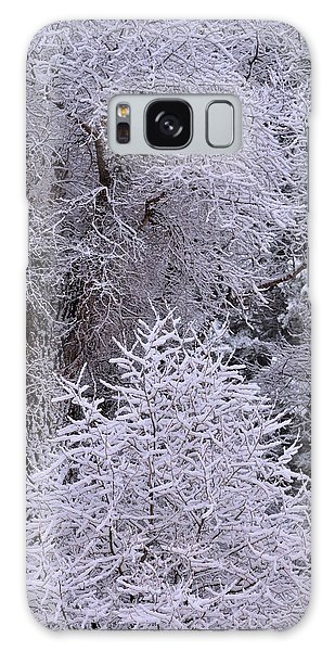First Snow I Galaxy Case