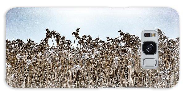 First Snow On Roman Reed Galaxy Case