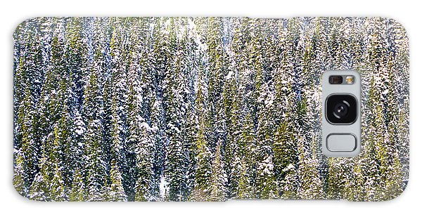 First Snow On Trees Galaxy Case