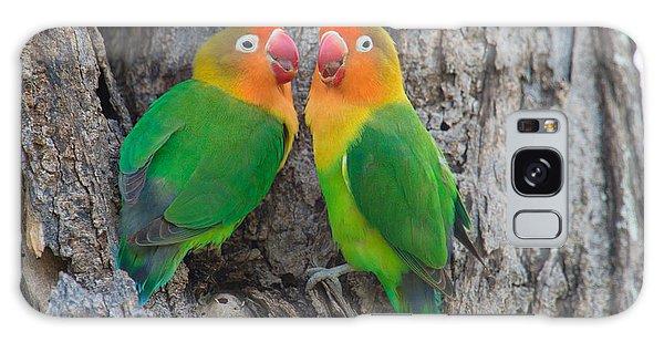 Lovebird Galaxy S8 Case - Fischers Lovebird Agapornis Fischeri by Panoramic Images