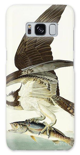 Osprey Galaxy Case - Fish Hawk by John James Audubon