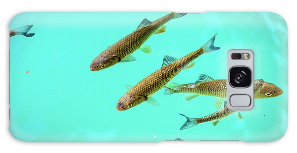Fish School In Turquoise Lake - Plitvice Lakes National Park, Croatia Galaxy Case