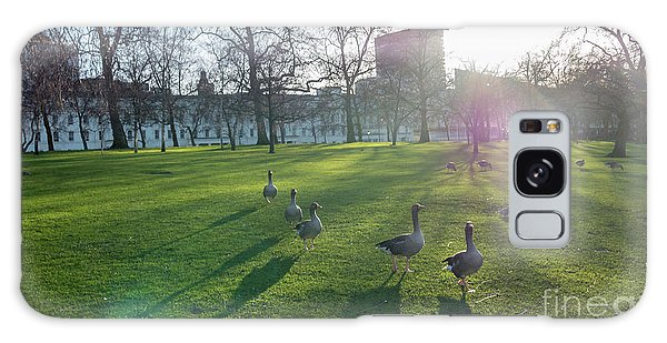 Five Ducks Walking In Line At Sunset With London Museum In The B Galaxy Case