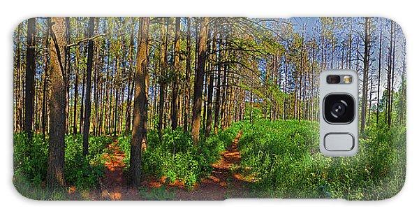 Paths, Pines 360 Galaxy Case