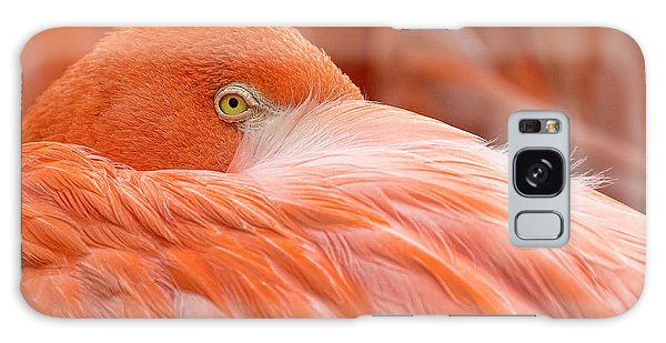 Flamboyant Flamingo Galaxy Case