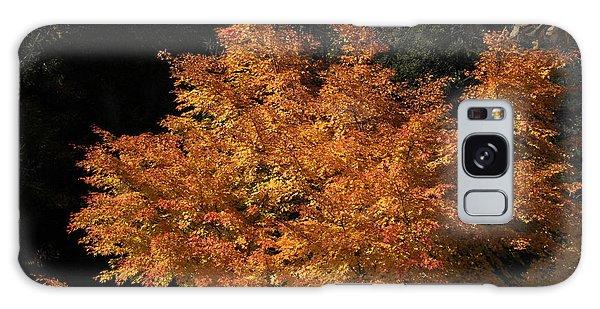 Flaming Tree Brush Galaxy Case by Deborah  Crew-Johnson