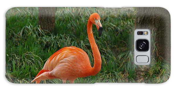 Flamingo 1 Galaxy Case by Robyn Stacey