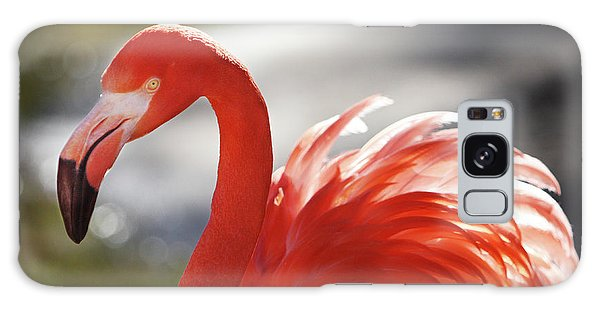 Flamingo 2 Galaxy Case