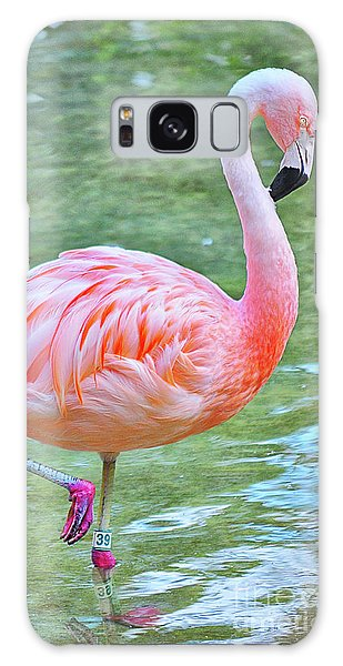 Flamingo 39 Galaxy Case