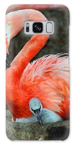 Flamingo And Baby Galaxy Case