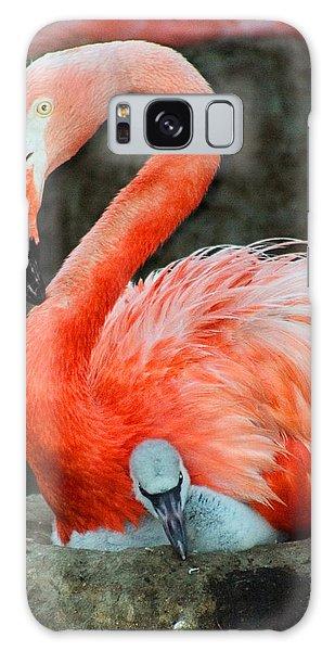 Flamingo And Baby Galaxy Case