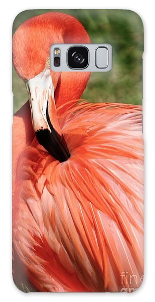 Flamingo At The Park 1 Galaxy Case