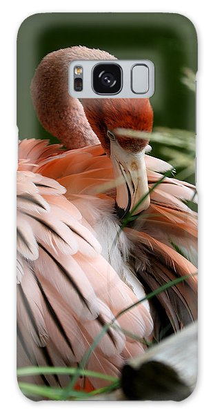 Flamingo Boudoir Galaxy Case