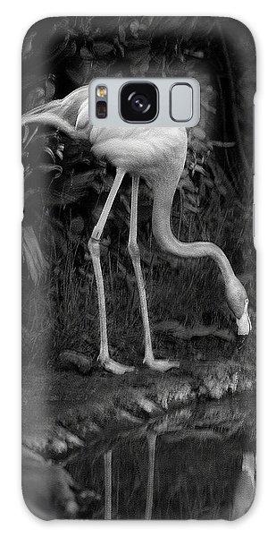 Flamingo Lake, Film Finish Galaxy Case