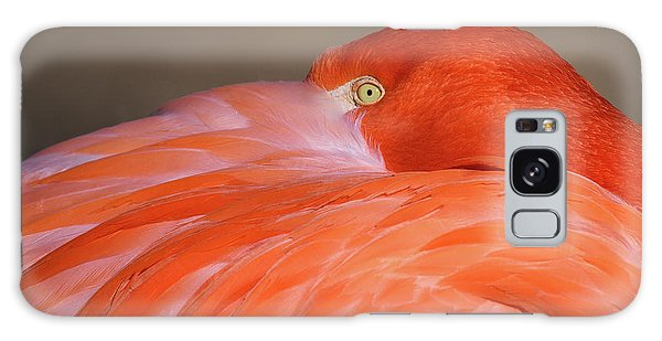Galaxy Case featuring the photograph Flamingo by Michael Hubley
