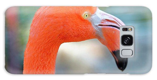 Flamingo Portrait Galaxy Case