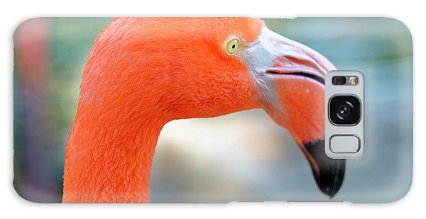 Flamingo Portrait Galaxy Case
