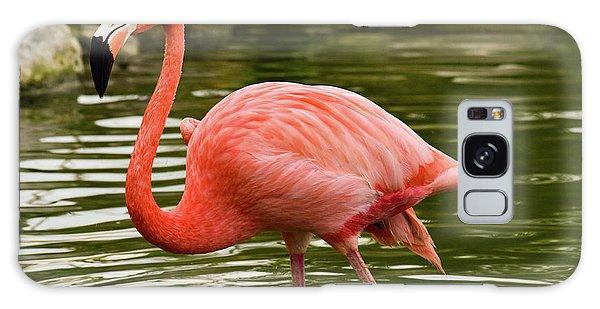 Flamingo Wades Galaxy Case