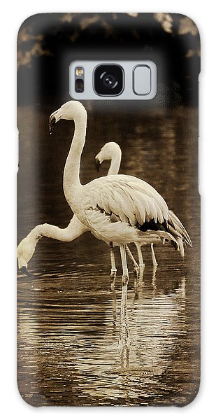 Flamingos Galaxy Case