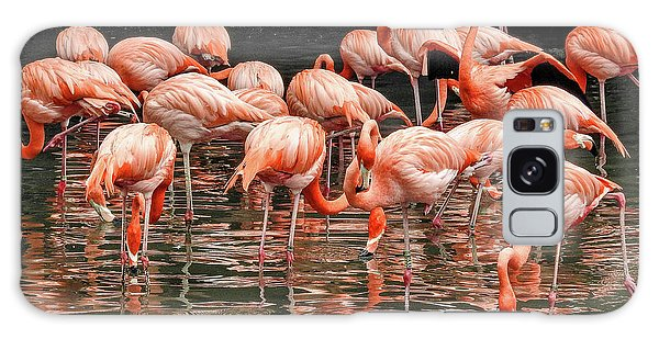 Flamingo Looking For Food Galaxy Case