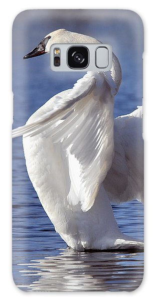 Flapping Swan Galaxy Case