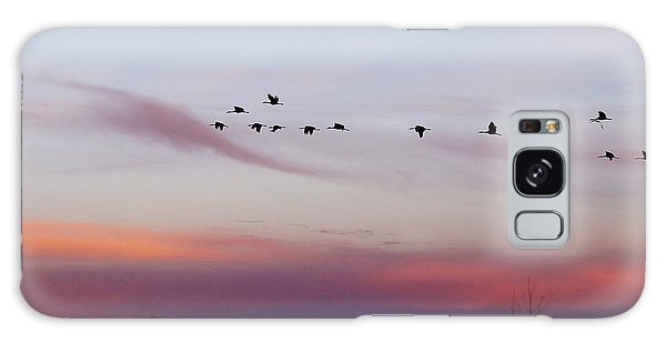 Flight At Dusk At The Bosque Galaxy Case