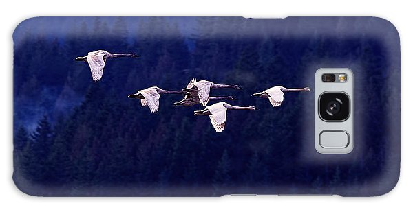 Flight Of The Swans Galaxy Case