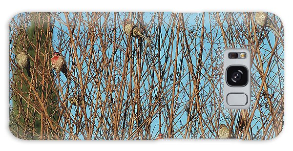 Flock Of Finches Galaxy Case