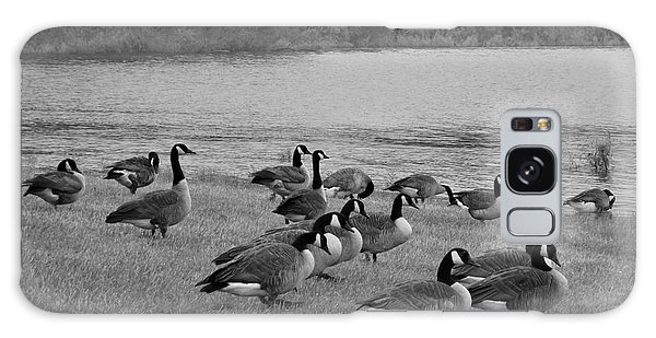 Flock Of Geese Galaxy Case