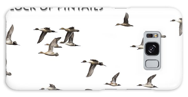 Flock Of Pintails Galaxy Case