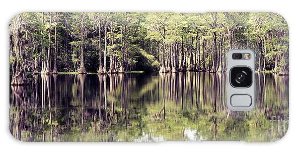 Florida Beauty 10 - Tallahassee Florida Galaxy Case